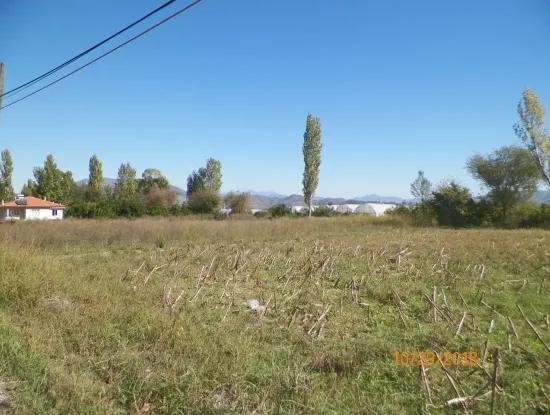 Oriya Dalakli Also Plot 1000 M2 Land For Sale Bargain