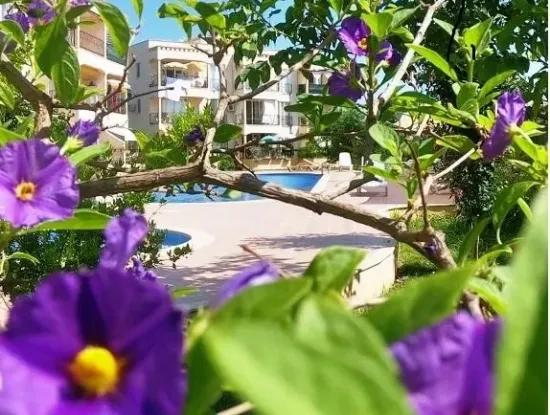 A Bargain Fully Furnished Apartment For Sale In Dalaman