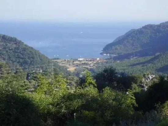 Köyceğiz Ekincik Land With Sea View For Sale Bargain Te