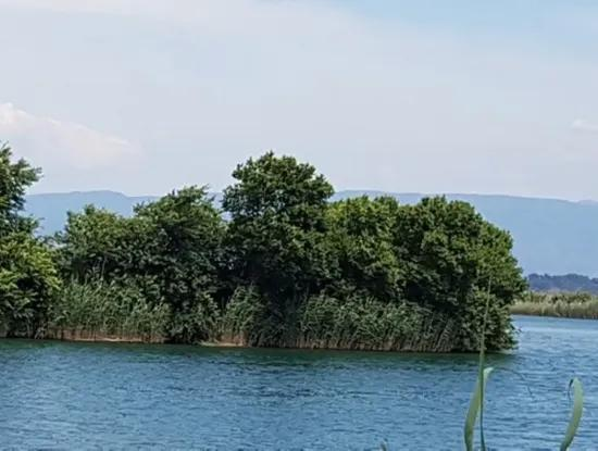 Property For Sale In Dalyan Channel Zero-Valued Land