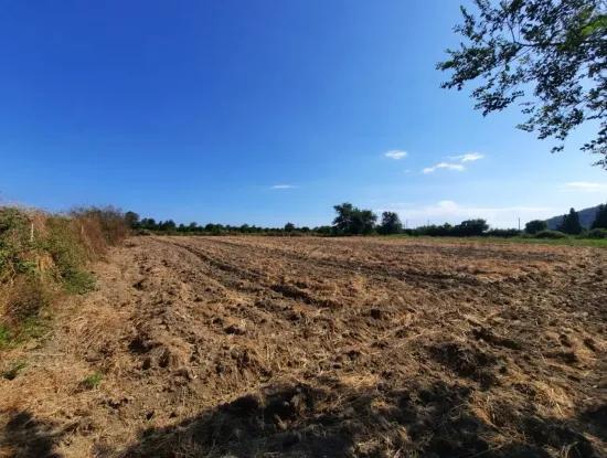 Ortaca Fevziye De Satılık Yola Sıfır Arazi