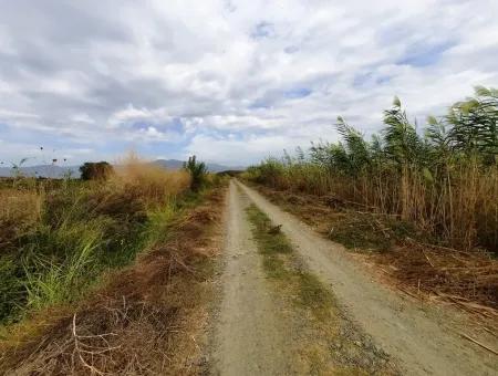 Ortaca Eskiköyde Satılık Verimli Arazi