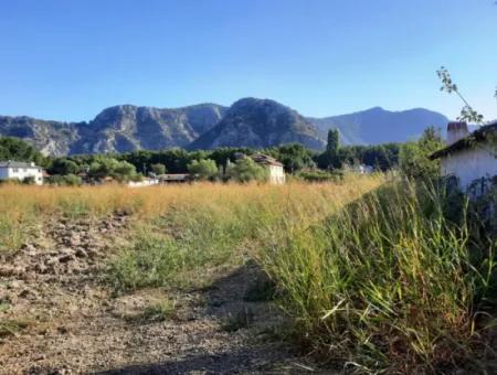 Muğla Ortaca Okçularda Dalyan Sınırında Satılık Yatırıma Uygun Kelepir Arazi