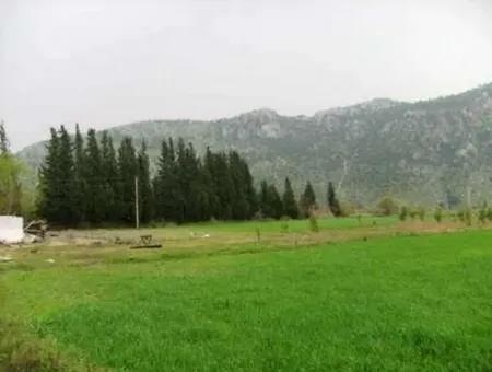 Okçular Da Satılık Yatırıma Uygun Verimli Arazi