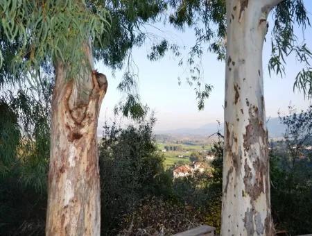 Ula Esentepe De Satılık Kelepir Konut Arsası