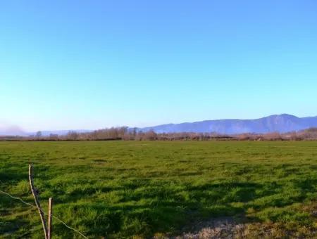 Ula Karaböğürtlende Acil Satılık Kelepir Arazi