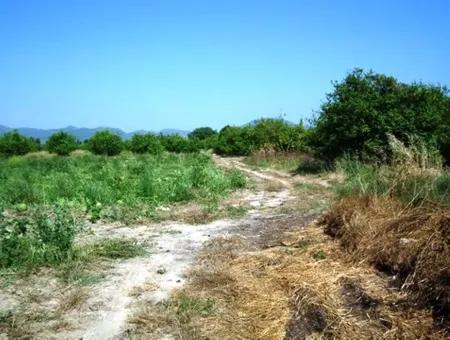 Ortaca Fevziyede Satılık Müstakil Arazi